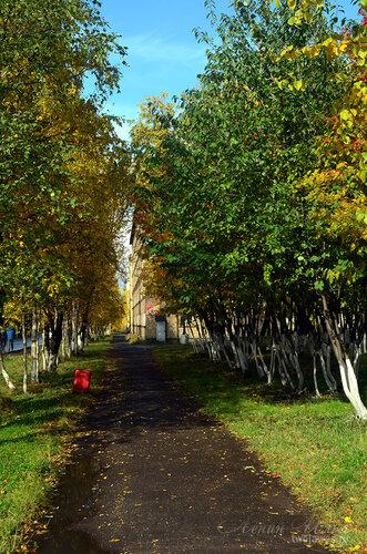Фотография Инты №7234  Юго-западный угол Бабушкина 4 (вид от площади Комсомольской) 16.09.2014_11:59