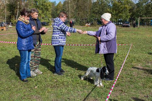 56-я Областная выставка в Пскове. 0_b2b49_e9db212b_L