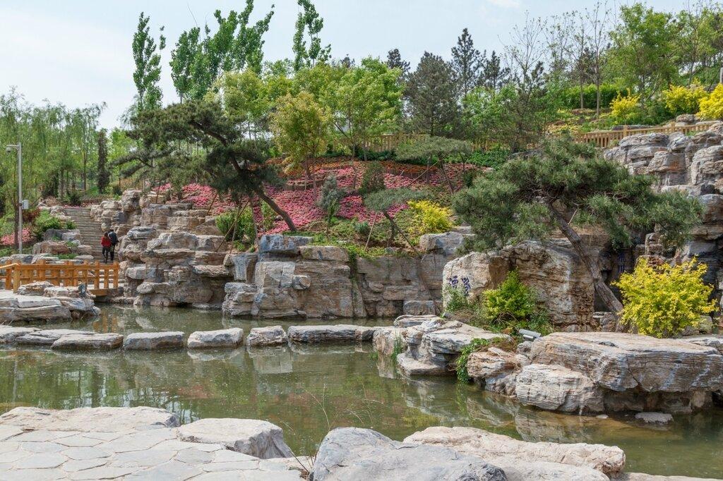 Цветущий склон, парк-выставка садов, Пекин