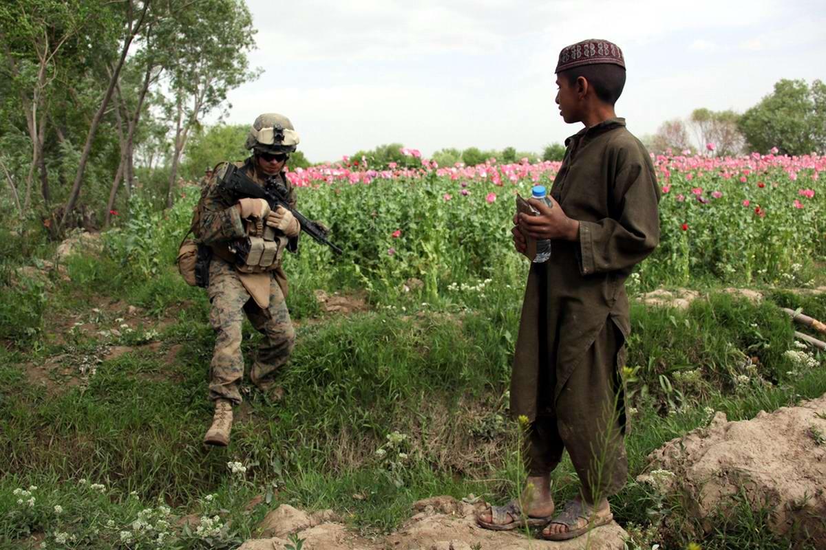 Посреди маковых полей Афганистана - фотографии военнослужащих корпуса морской пехоты США (1)