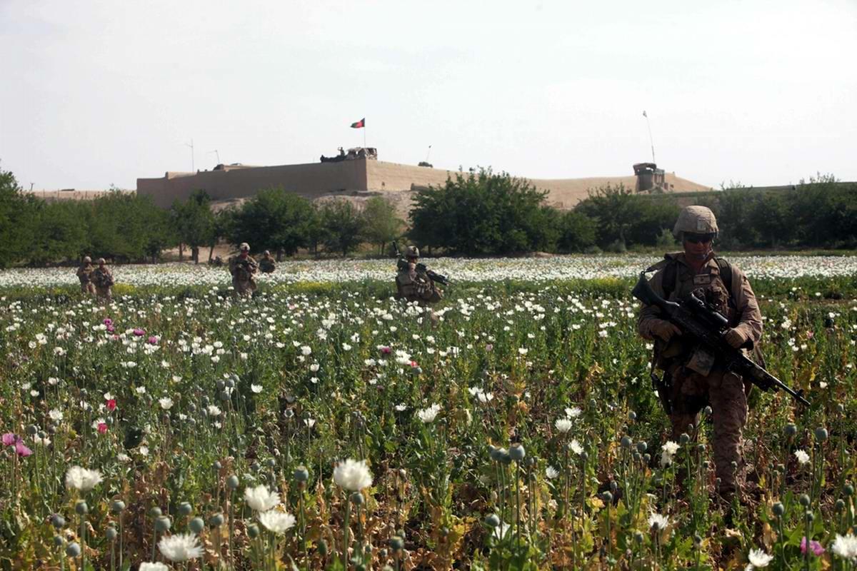 Посреди маковых полей Афганистана - фотографии военнослужащих корпуса морской пехоты США (25)