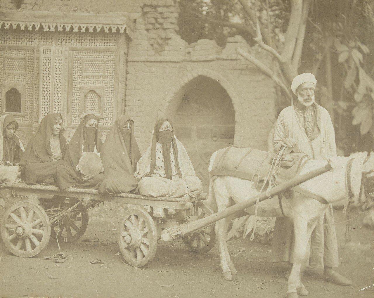Женщины в чадрах на телеге, запряженной ослом