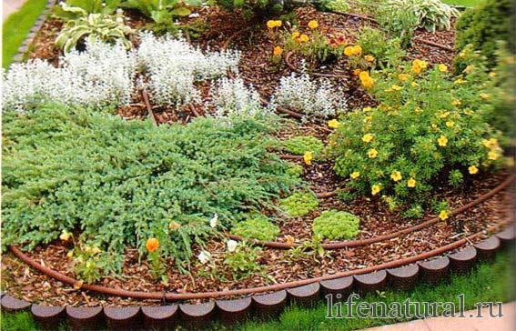 Садовых дорожек и клумб своими руками