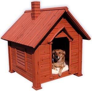 Собачья будка