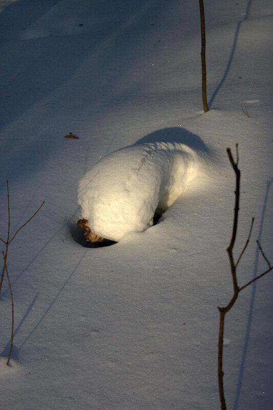 Домик под снегом