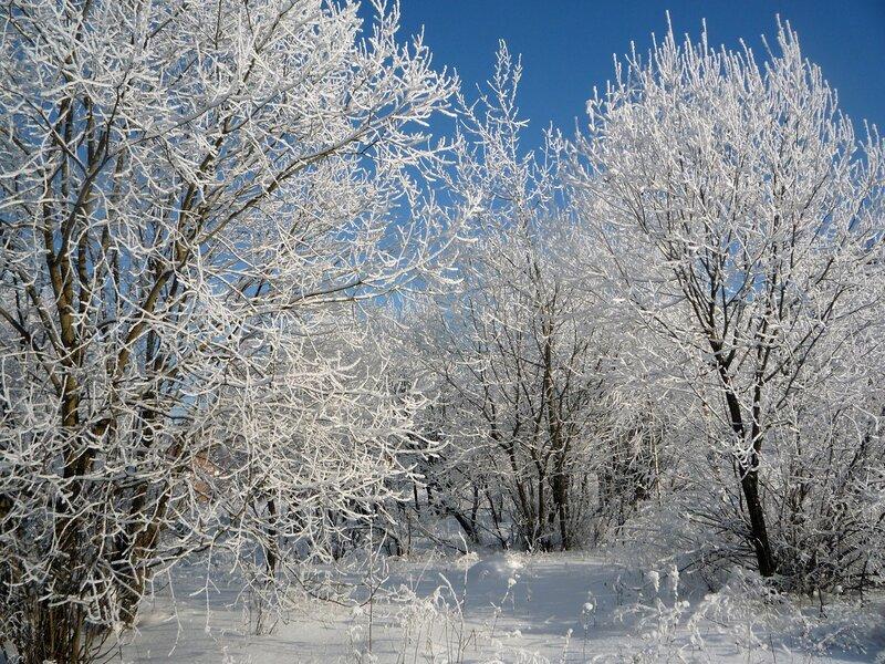 Анимация снега на фото онлайн
