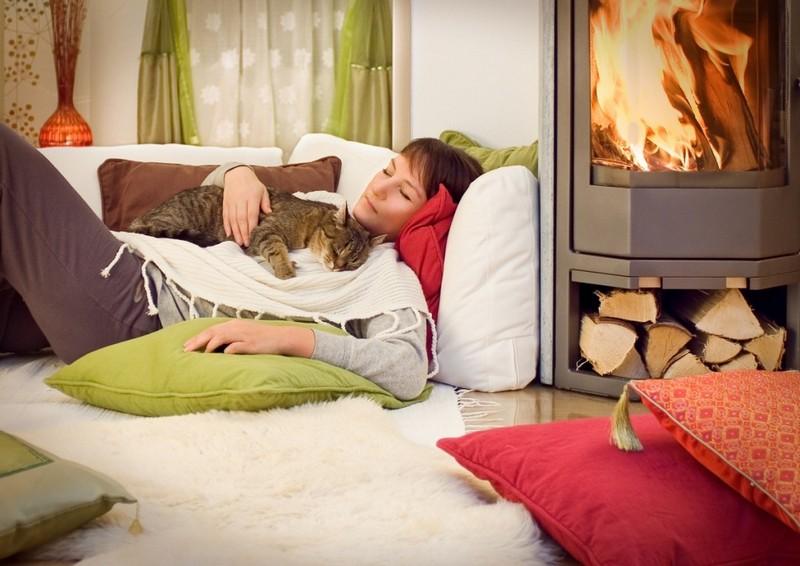Учёные доказали, что котики действительно лечат