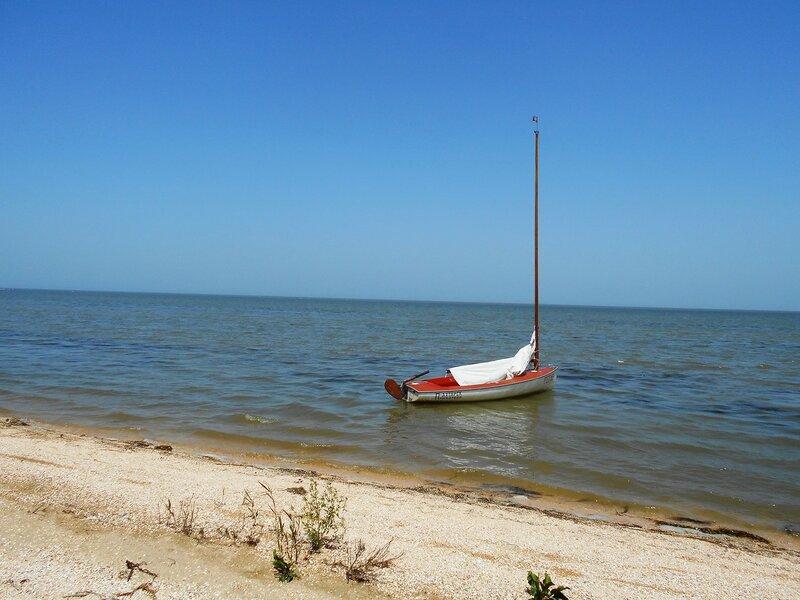 У берега ... DSCN6352.JPG