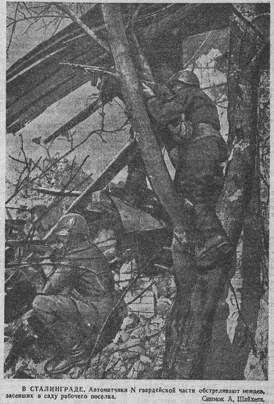«Красная звезда», 27 октября 1942 года, Сталинградская битва, сталинградская наука, битва за Сталинград