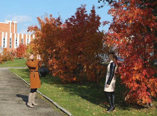 Осенние фотосессии