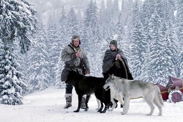 Известные фильмы, в которых люди помогают животным