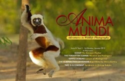 Anima Mundi Magazine. Issue 9