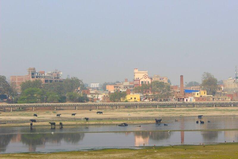 Утро на реке Ямуна