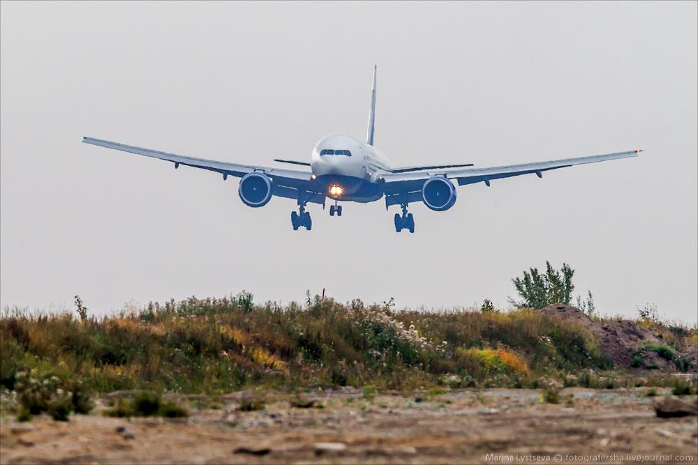 Трансаэро, обслуживание самолета на перроне