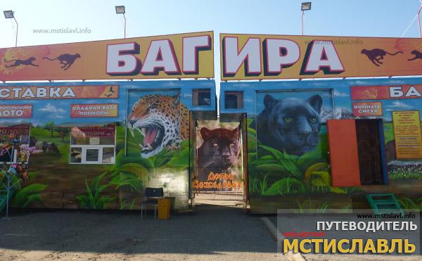 В Мстиславль приехал ЗООПАРК