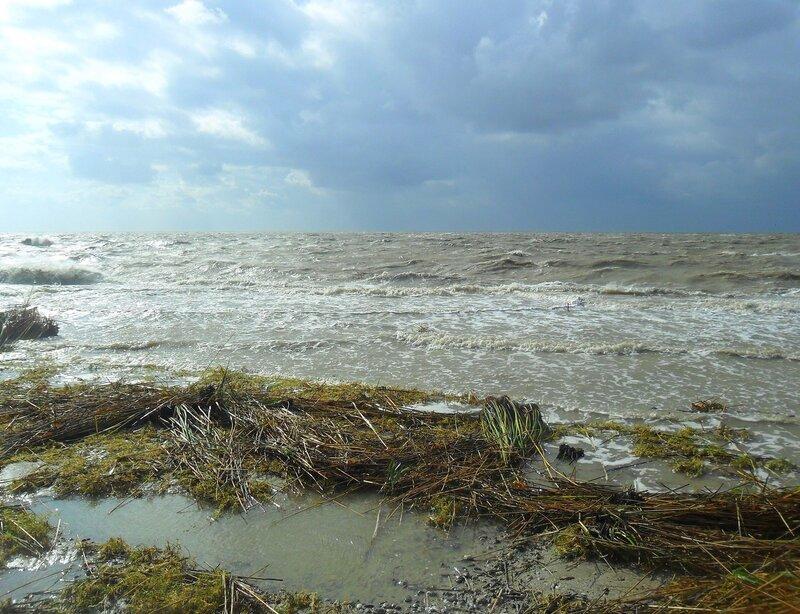 24 сентября 2014, у моря, сильный ветер, после бури, Азовское побережье