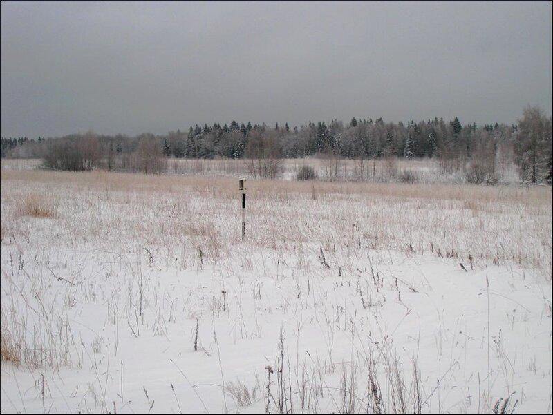 Морозовское поле