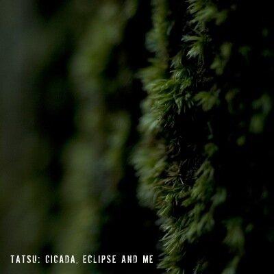 Tatsu - Cicada, Eclipse and Me (2010)