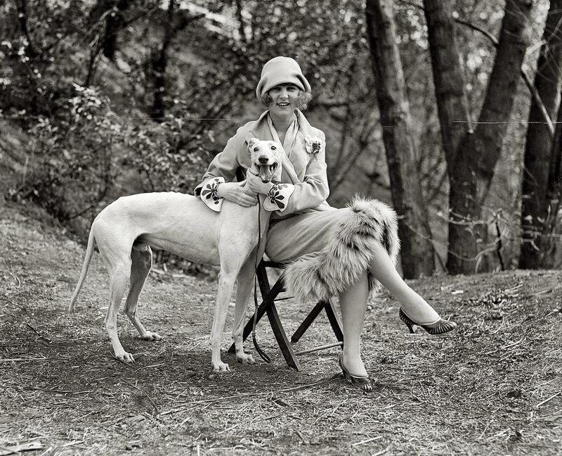 Старинное фото. Портрет с собакой,1920