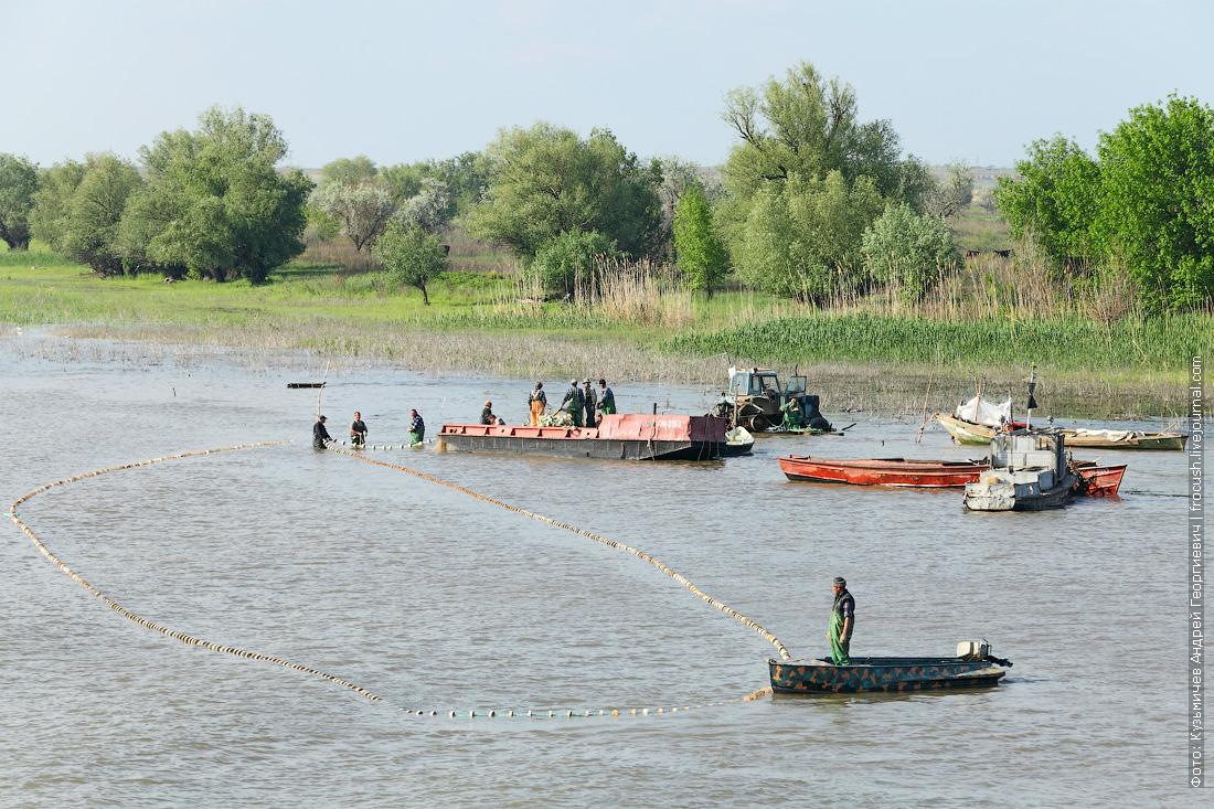 рыбаки дельта Волги Бахтемир
