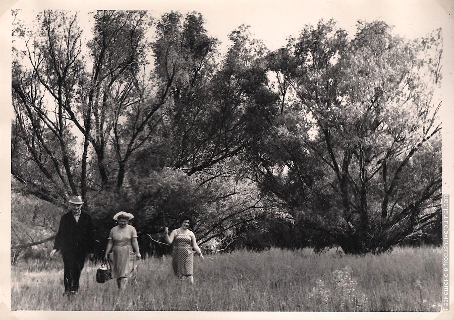 Зеленая стоянка Чардым во время речного круиза 1965 год
