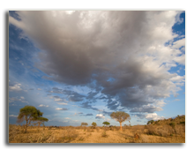 Кения. Late afternoon sun & spectacular clouds over the plains of Tsavo East, Kenya. Фото LisaStrachan - Depositphotos