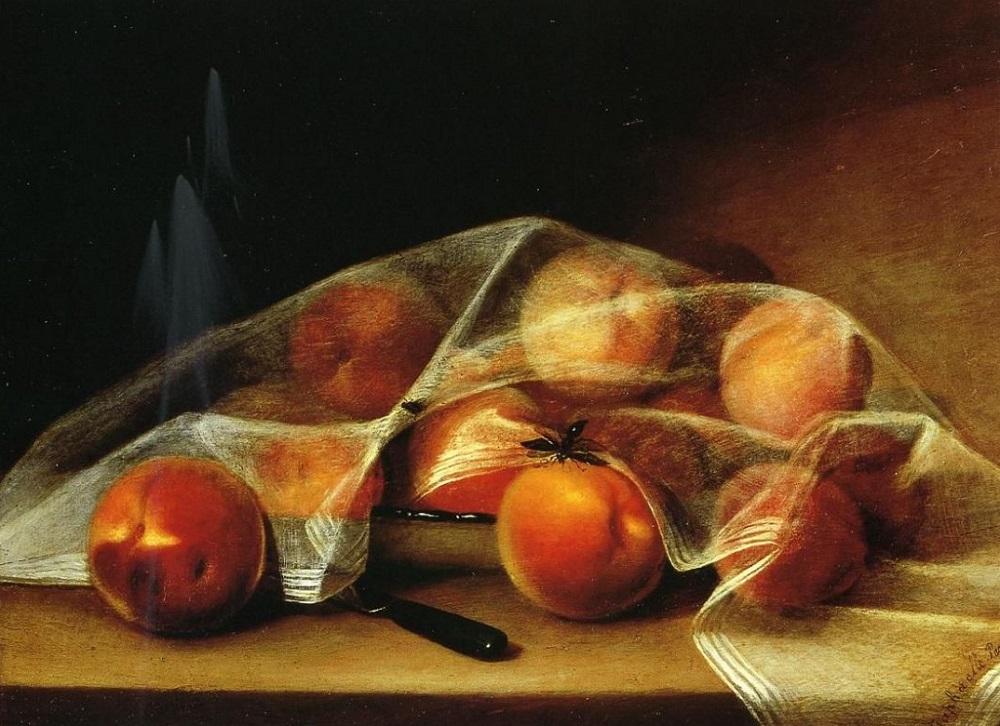 Рафаэль Пил. Накрытые персики. 1819