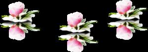 http://img-fotki.yandex.ru/get/4115/136487634.93f/0_c9b06_39b4865b_M.png
