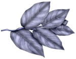 SkyScraps-Adore-Leaves7.png