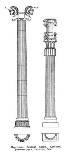 Персеполь, дворцовый комплекс, Колонна и капитель, чертежи