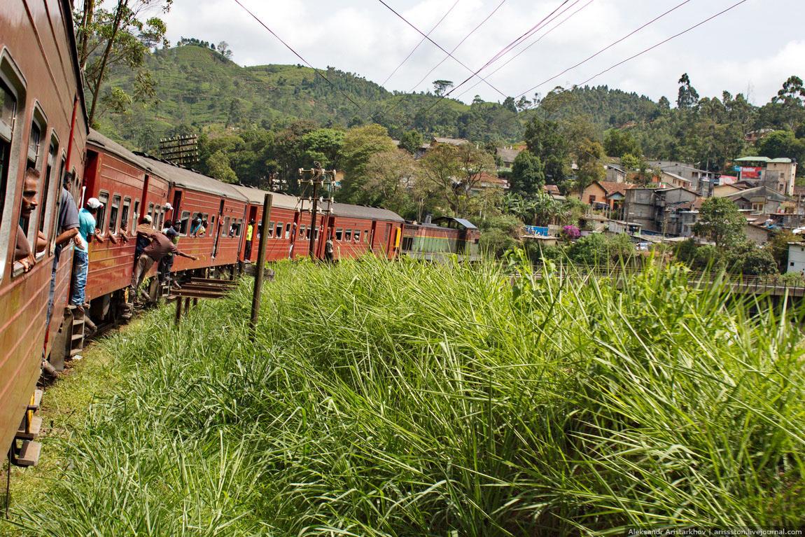 Шри-Ланка_Как угнать поезд_10