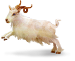 TurningLeafApothecary_LorieD_c_Sir_Gilbert_Goat1bb.png