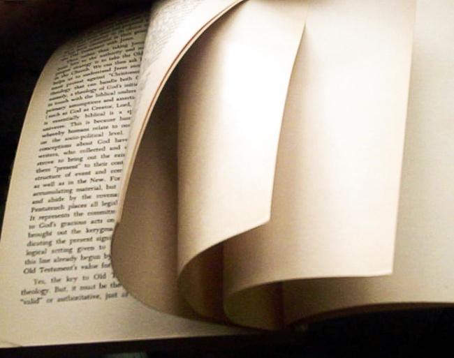 © wikipedia  Наверное, вызамечали, что внекоторых книгах всамом конце или вначале есть одн