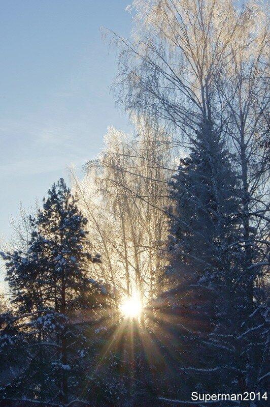 Морозным утром...
