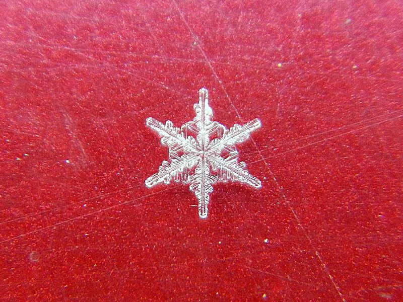 снежинка DSCN1259.jpg