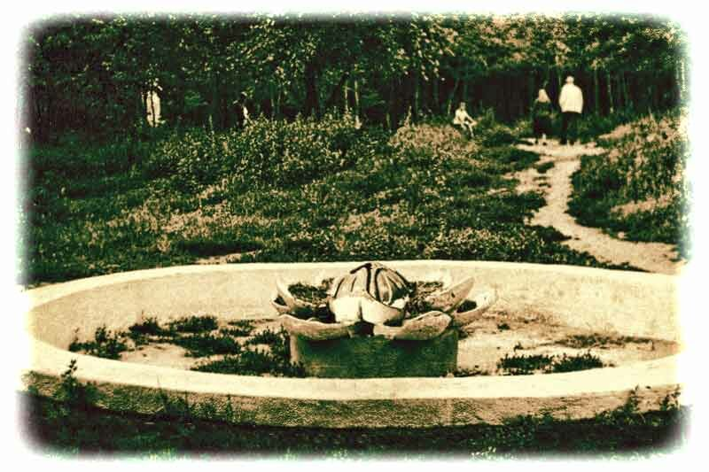 "фонтан ""Кувшинка"" в парке Ленина"