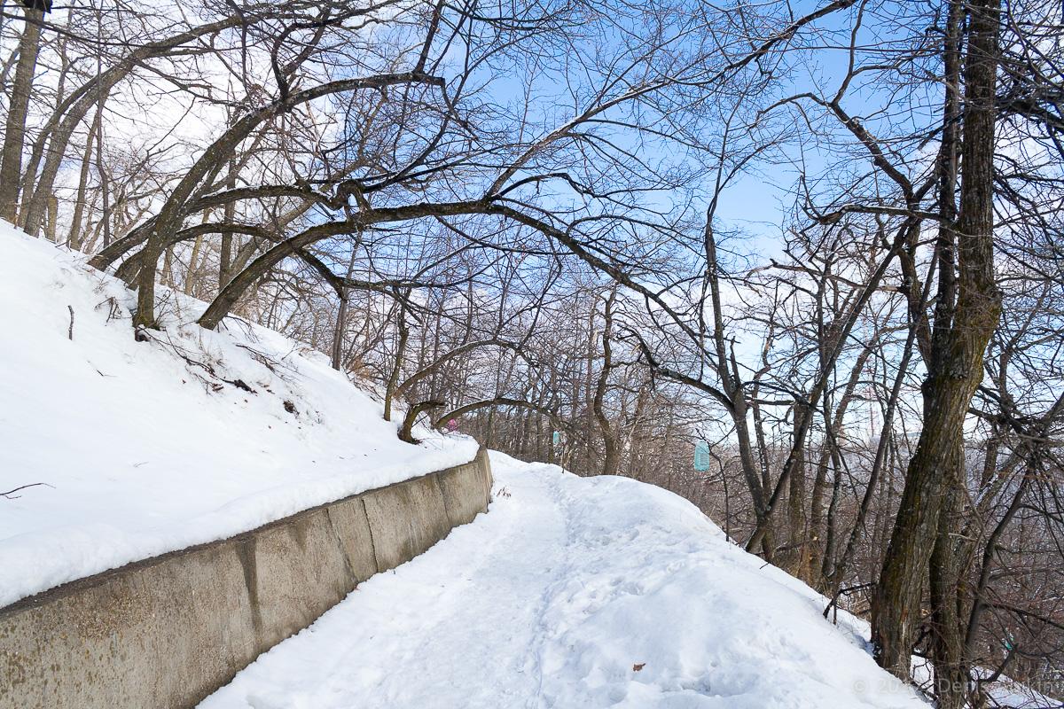 терренкур октябрьское ущелье зима Саратов фото 11