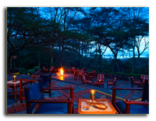 Кения. Озеро Накуру. Sarova Lion Hill Game Lodge. Flamingo-bar