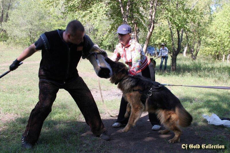 http://img-fotki.yandex.ru/get/4116/134559744.b/0_91028_cfcf342f_XL.jpg