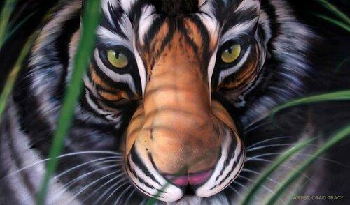 Боди-арт в защиту животных