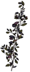 SkyScraps-Adore-Leaves8.png