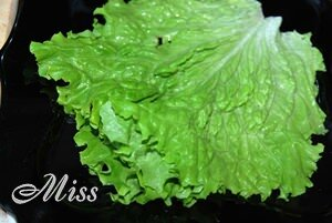 Салатные листья для сервировки салата с авокадо