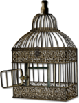 mzimm_daysgoneby_bird_cage_sh.png