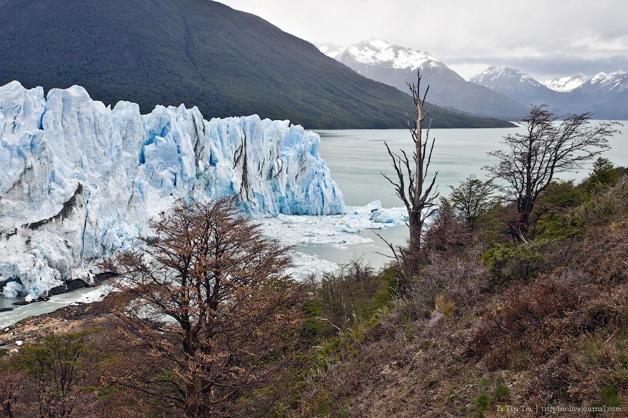 14. Устоявший перед потеплением. Ледник Перито Морено.