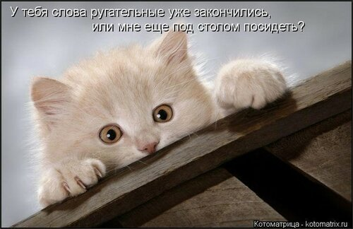 http://img-fotki.yandex.ru/get/4116/194408087.1/0_8e1e6_9954d890_L.jpg