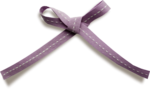 PURPLE BOW .png