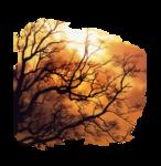 Graphics landscape, nature, city 0_a263d_fca202f1_S
