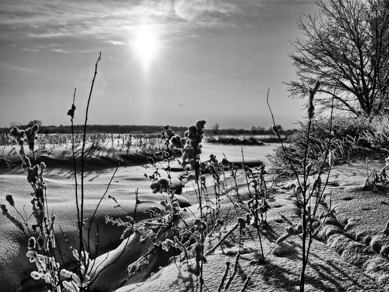 Зимний ручей в черно-белом