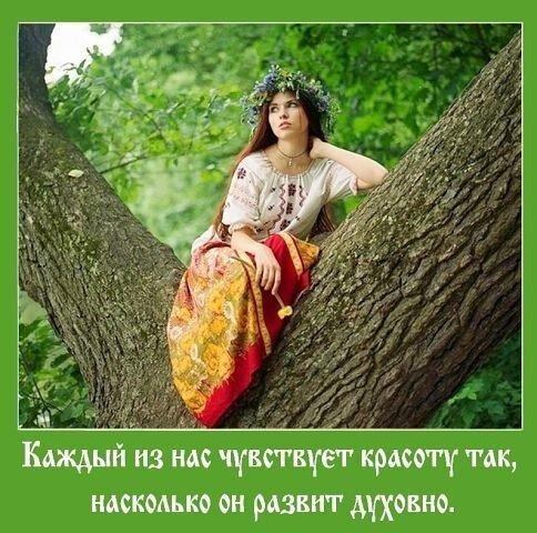 http://img-fotki.yandex.ru/get/4116/54835962.8b/0_11cd39_3c8f1143_L.jpg height=480