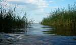 Lake Ladoga / Ладожское озеро